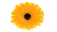 Gerbera - žlutá