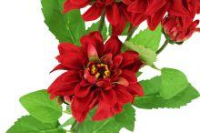 Jiřina - červená