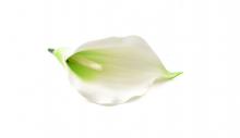 Kala pěnová - sv. zelená