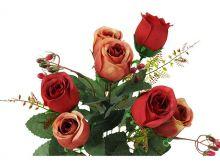 Růže x7 - cihlová
