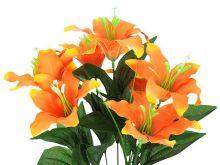 Lilie x7 - oranžová