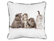 Polštář - koťata