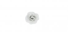 Růže mini - bílá