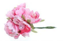 Jabloň x6 - růžová