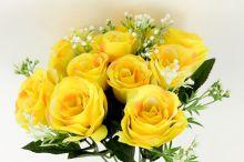 Růže x10 - žlutá