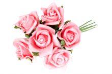 Růže pěnová x6 - růžová