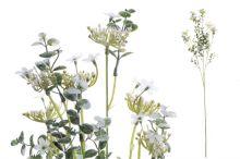 Větvička kvetoucí