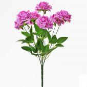 Růže x7 - sv. cyklamen
