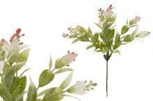 Zeleň zápich - bílo-růžová