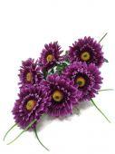 Gerbera x6 - fialová