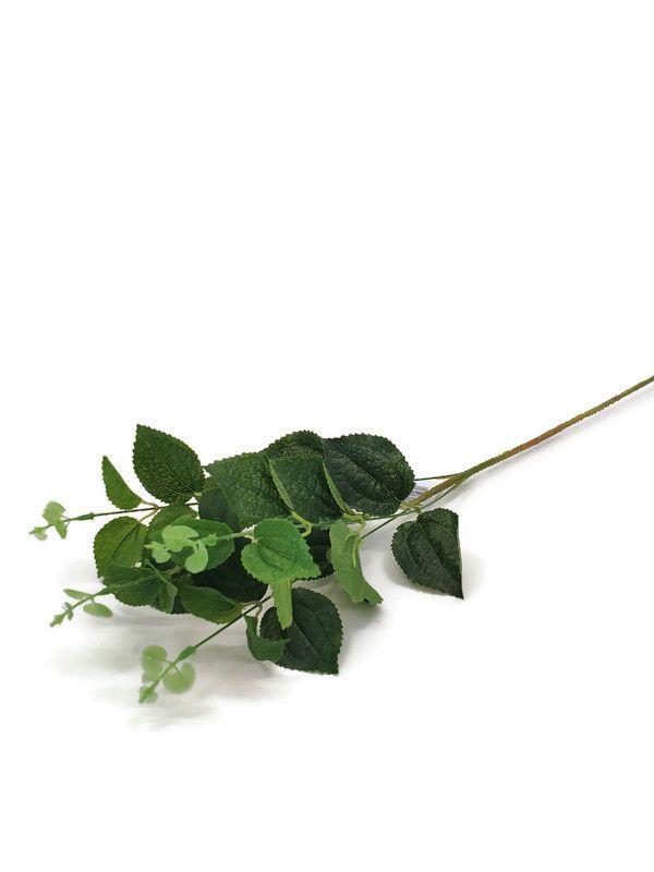 Větvička zeleň