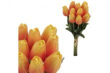 Tulipán pěnový - oranžová