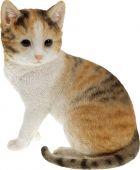 Kočka - barevná