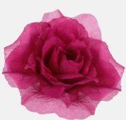 Růže - cyklamen