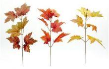 Větvička podzim