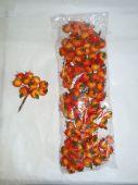 Jablíčka - oranžová